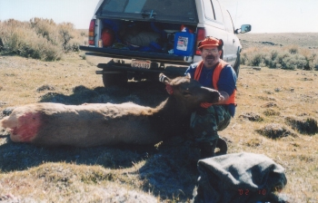 Bobs Cow Elk 2002
