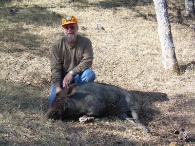 Bill's 240lb Pig